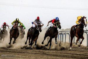Asbdavani 16 Sh 300x200 - ۶۳ راس اسب در هفته یازدهم کورس تابستانه بندرترکمن رقابت میکنند