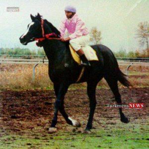 Dylber TN 300x300 - دلبر، اسب محبوب میدانهای مسابقه اسبدوانی از پا در آمد/ یادداشتی کوتاه از این اسب بزرگ