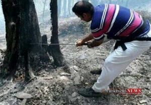 Mahar Atashsozi 16 2 Sh 1 300x209 - مهار آتش سوزی مناطق جنگلی کردکوی درغرب گلستان