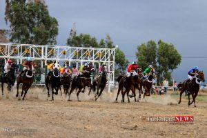 Savarkari 17 Sh 300x200 - هفته یازدهم کورس اسبدوانی تابستانه بندرترکمن برگزار شد