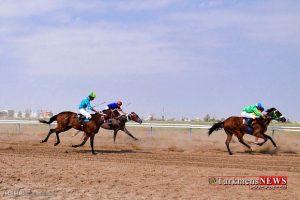 Savarkari 20 1 M 1 300x200 - هفته ششم کورس اسبدوانی تابستانه بندرترکمن برگزار شد