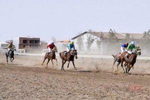 asb1 4sh 300x200 - هفته نهم کورس اسبدوانی تابستانه بندرترکمن برگزار شد