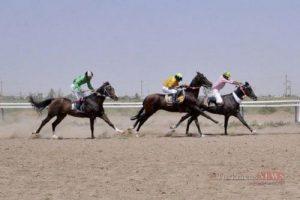 asb2 4sh 300x200 - هفته نهم کورس اسبدوانی تابستانه بندرترکمن برگزار شد