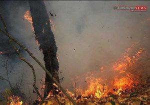atashj 30sh 300x211 - حدود۵۰ هکتار از اراضی جنگلی و مراتع 2 محدوده مراوهتپه در آتش سوخت