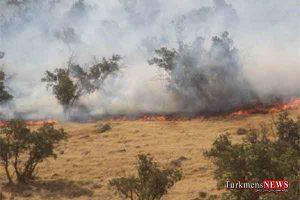 atashjk 2m 300x200 - ۶ هکتار جنگلهای سوزنیبرگ کلاله و رامیان در آتش سوخت