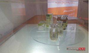 daroo 24sh 300x178 - دستیابی به تولید صنعتی نانو داروی هوشمند ضدسرطان کبد