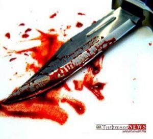 ghatl 6m 300x273 - قتل چوپان 55 ساله در درگیری خشونت آمیز