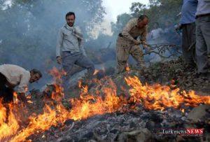 jkalale 31sh 300x203 - آتش جنگل های کلاله امروز با حضور نیروها مهار شد
